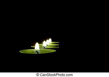 אור נר