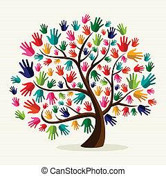 אחדות, העבר, צבעוני, עץ