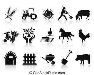 איקונים, שחור, קבע, חוה, חקלאות