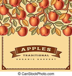 אסף, ראטרו, כרטיס, תפוח עץ