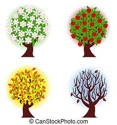 ארבעה, תפוח עץ, עונות, עץ.