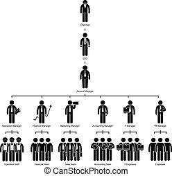 ארגון, חברה, עץ, שרטט