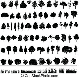 בושים, עצים, דשא