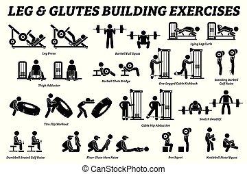 בנין, רגליים, הבן, pictograms., הדבק, glutes, שריר, התאמן
