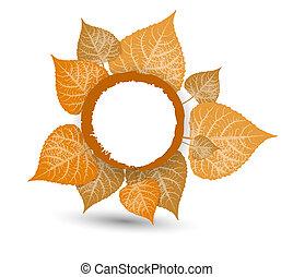 בעל, background-autumn, עוזב, סתו, עצב, לפול, שלך