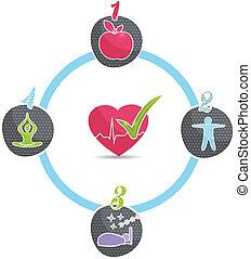 בריא, גלגל, סגנון חיים