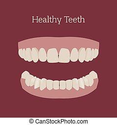בריא, דמות, שיניים