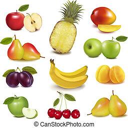 גדול, שונה, קבץ, fruit., vector.