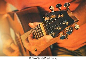 גיטרה אקוסטית, מוסיקה