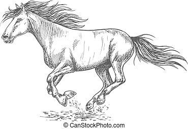 דמות, לרוץ, סוס, מהר, רשום