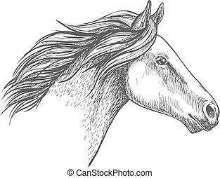 דמות, סוס, לבן, רשום, עפרון