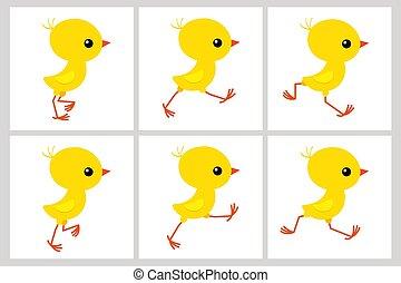 דף, שדון, הפרד, לרוץ, רקע של אנימציה, עוף, לבן