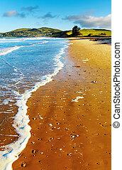 הבט, חופי, ניו זילנד