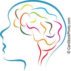 הובל, מוח
