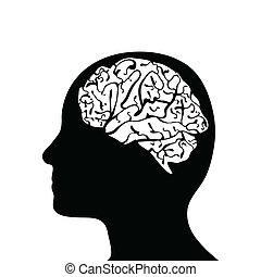 הובל, סילהאואטאד, מוח