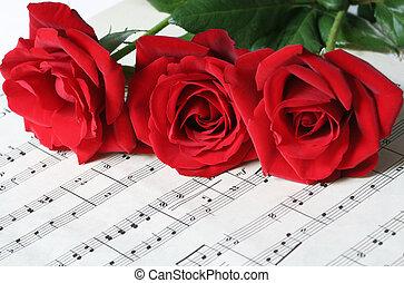 ורדים, דף, שלושה, אדום, מוסיקה