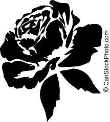 ורדים, שחור