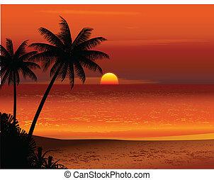 חוף טרופי, שקיעה