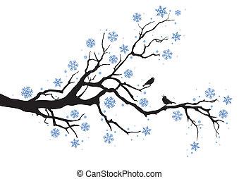 חורף של עץ, ענף
