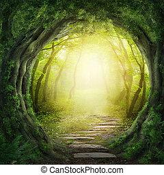 חושך, יער, דרך