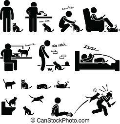 חיה בית, איש, מערכת יחסים, חתול