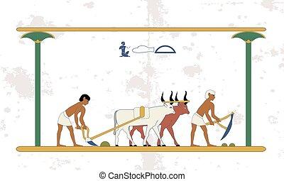 חרוש, עתיק, אנשים, מצרים, איכרים, שורים, רקע., field., היסטורי, התחבר