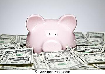 חשבונות, דולר, בנק של חזרזיר