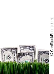 חשבונות, זקוף, דולר, stashed, אמריקאי, דשא ירוק, הבט