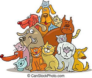 חתולים, קבץ, כלבים