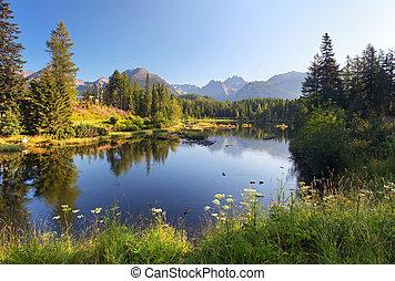 יפה, הר, טבע, pleso, -, קטע, אגם, סלובקיה, tatra, strbske