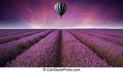 יפה, קיץ, דמות, אזובין, הבלט, תחום, חם, שקיעה, balloon, נוף