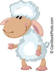 יפה, sheep
