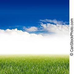 ירוק כחול, דשא, שמיים, מתחת