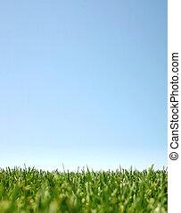 ירוק כחול, grass:happyland, שמיים