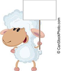כבש, חתום