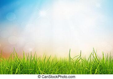 כחול, טבע, קפוץ, שמיים, השקע, רקע, דשא