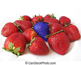 כחול, מושג, one., הבדל, תותי שדה, יחיד, אדום