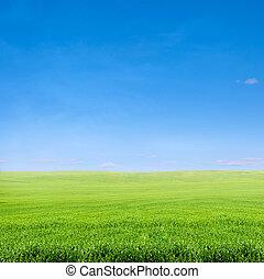 כחול, מעל, תחום של שמיים, דשא ירוק