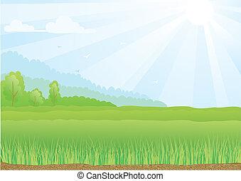 כחול, קרנות, sky., אור שמש, דוגמה, תחום, ירוק
