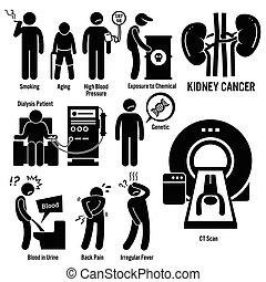 כלייה, סרטן