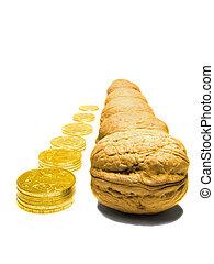 כסף, אגוז