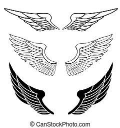 לבן, קבע, הפרד, כנפיים