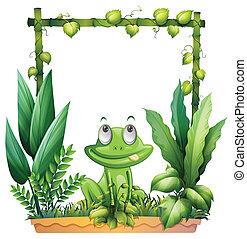לחשוב, צפרדע