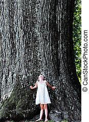 לעמוד, גדול, מתחת, עץ, ילד