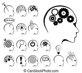 מדינות, מוח, קבע, איקון, פעילות