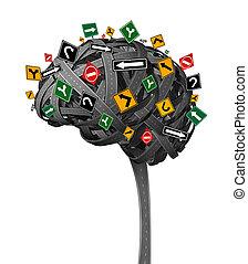 מוח, כיוון