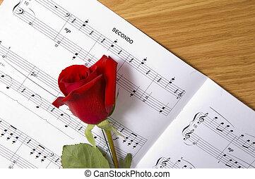 מוסיקה של דף, עלה