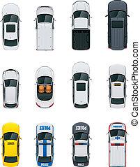מכוניות, וקטור, קבע