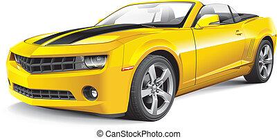 מכונית, אמריקאי, שריר, הפיך