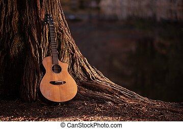 מעץ, גיטרה אקוסטית